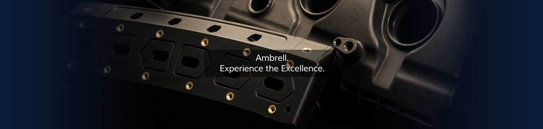 Ambrell. Experience the Excellence.
